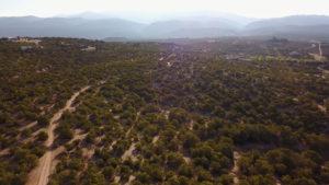Arbolitos at Las Estrellas Property lots near trails