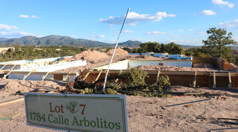 arbolitos-lot-7-7245