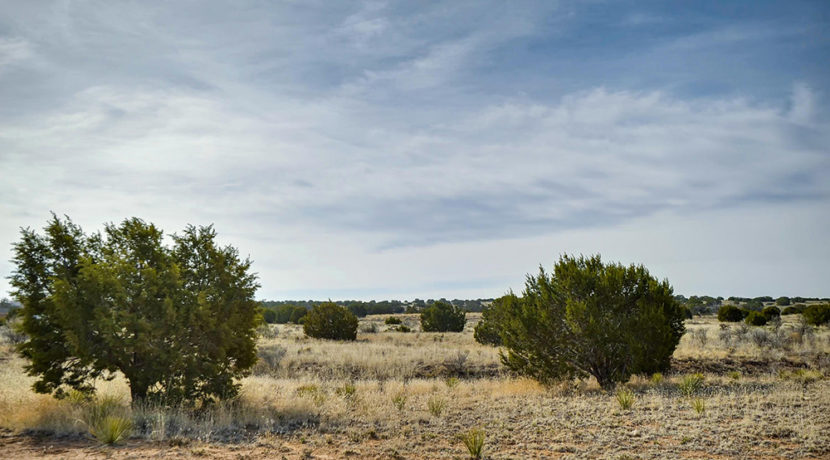 67-Bosquecillo-Santa-Fe-NM-large-022-15-Views-1500x1000-72dpi