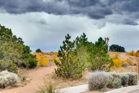 3152 Viale Tresana Santa Fe NM-small-019-021-Views-666x444-72dpi